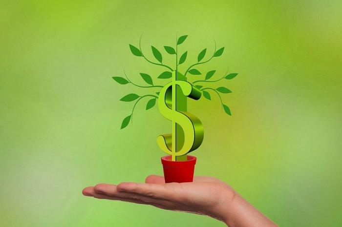 Tipps zur Steigerung der Rendite